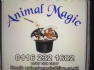 PeddyMark | Animal Magic pet microchip implanter in Leicestershire.